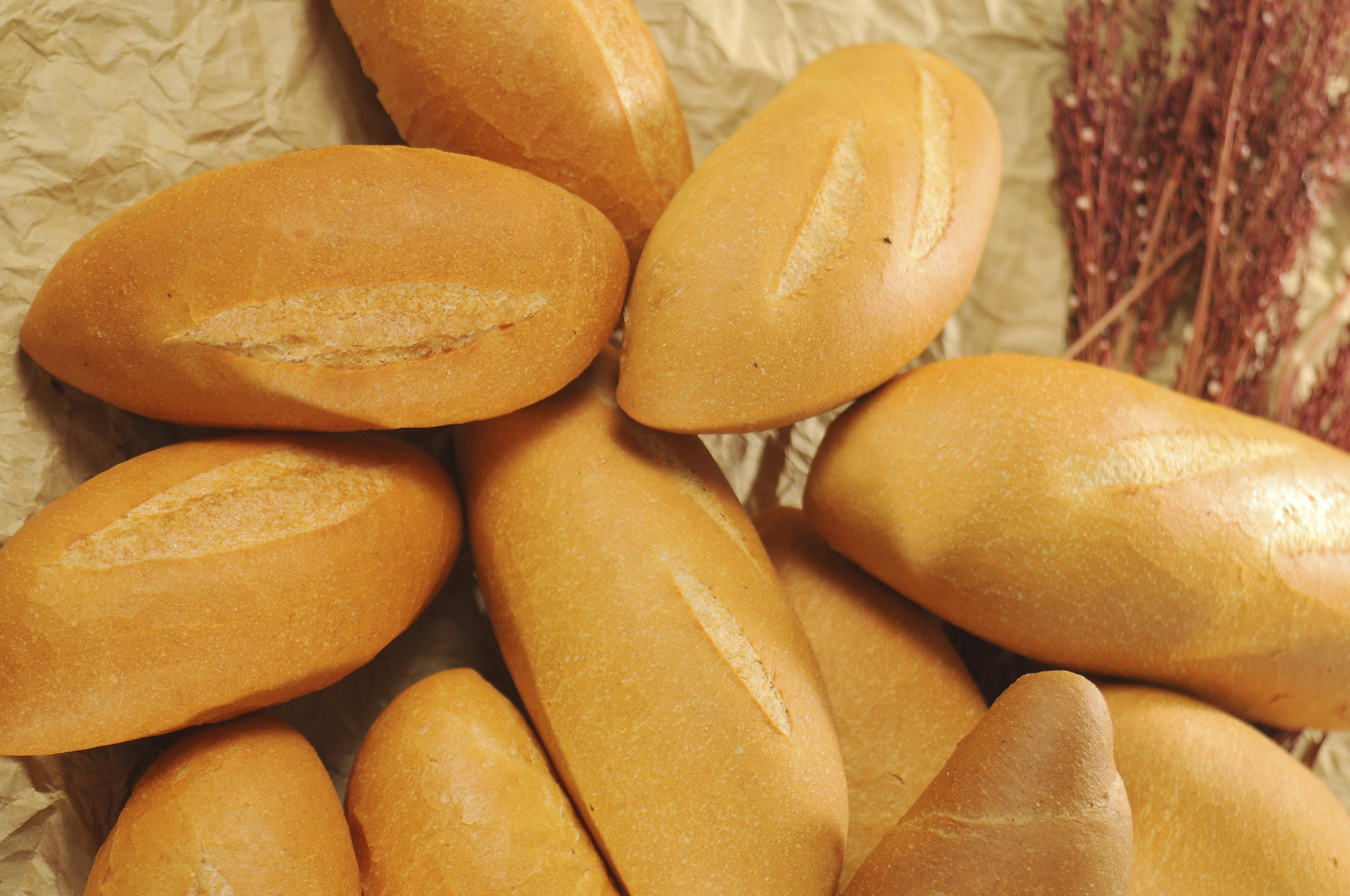 Lò nướng bánh mì xoay 8 khay