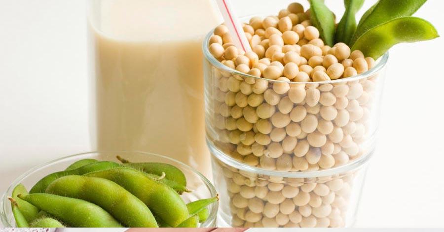 tác dụng của mầm đậu nành