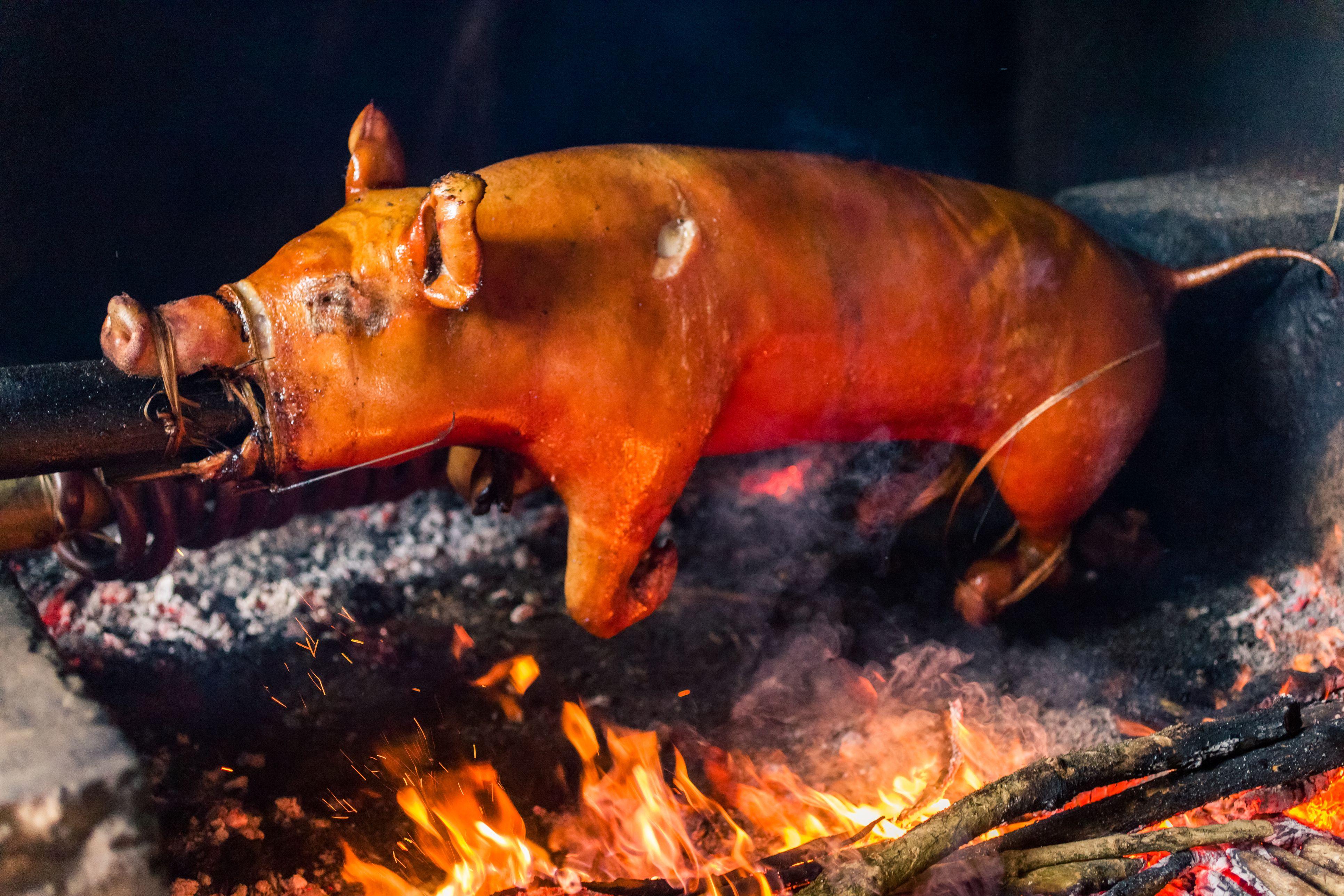 Tại sao lò quay lợn xoay lại được ưa chuộng đến vậy?