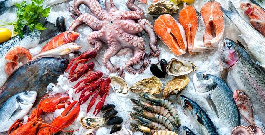 Kinh nghiệm mở vựa hải sản