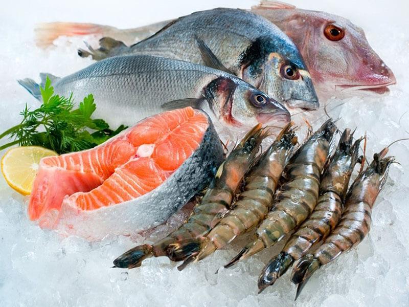 Bảo quản thủy sản ảnh hưởng trực tiếp đến khả năng kinh tế của ngư dân