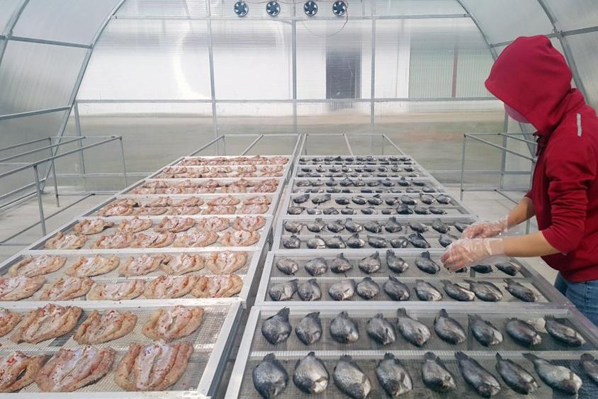 Nhà sấy sẽ giữ được độ dinh dưỡng vốn có của thủy sản
